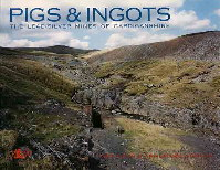 Pigs & Ingots Book Cover